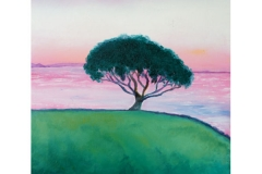 Onerahi Sunset